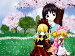 Rozen Maiden Shinku Hinaichigo Tomoe